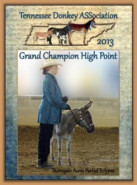 2013 Granc Champion High Point Donkey of The Tennessee Donkey ASSociation!