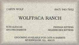 Wolfpaca Ranch (7286 bytes)