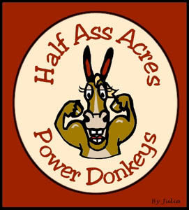Power Donkeys ~ Geldings!!!!